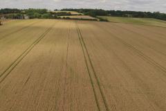 countryside-field